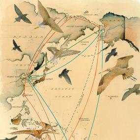 yellow-sea-map-mike-reagan-285
