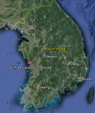 Geum estuary South Korea