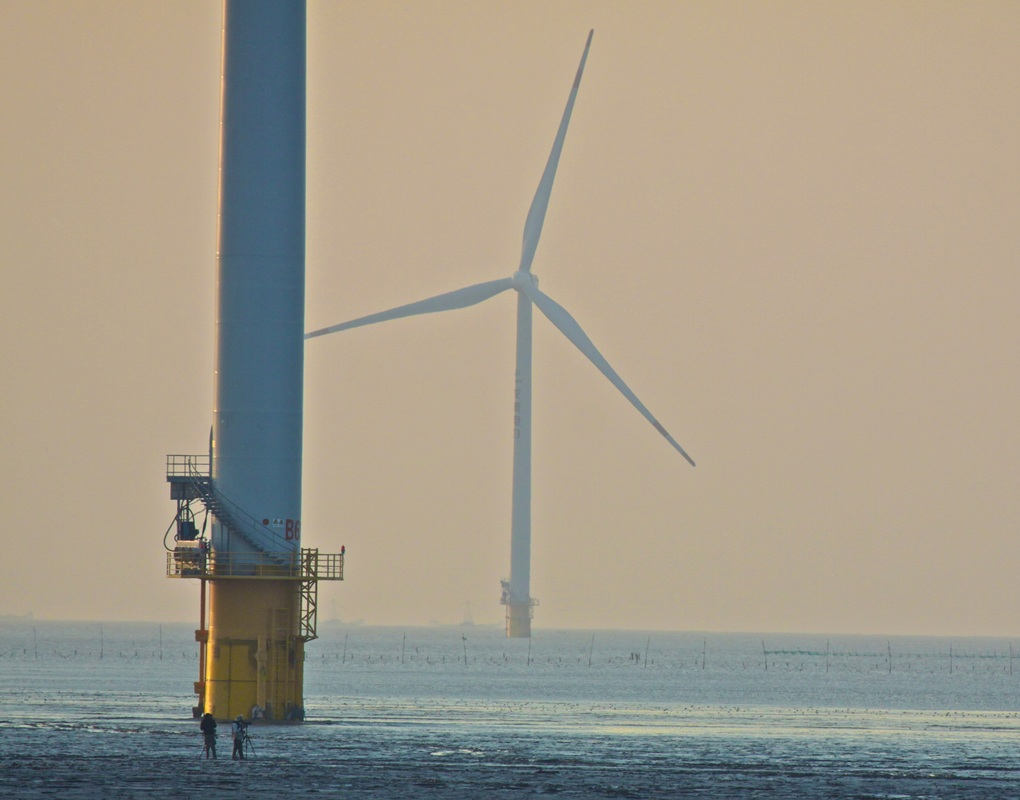 Giant Turbines cross the landscape and stretch far out into the Yellow Sea dwarfing us on the mudflats