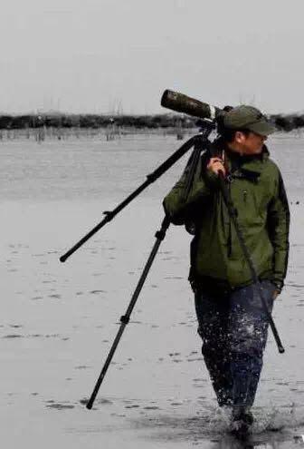Han Yongxiang, a wildlife illustrator from Lianyungang © Birding Beijing ????