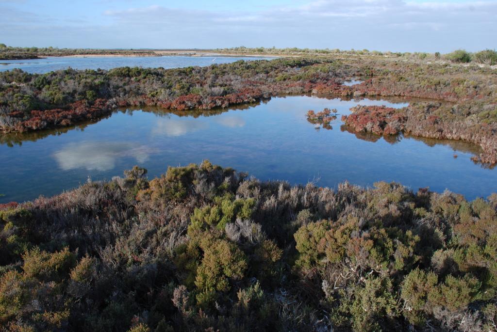 thompson-beach-within-the-bird-sanctuary-no-credits