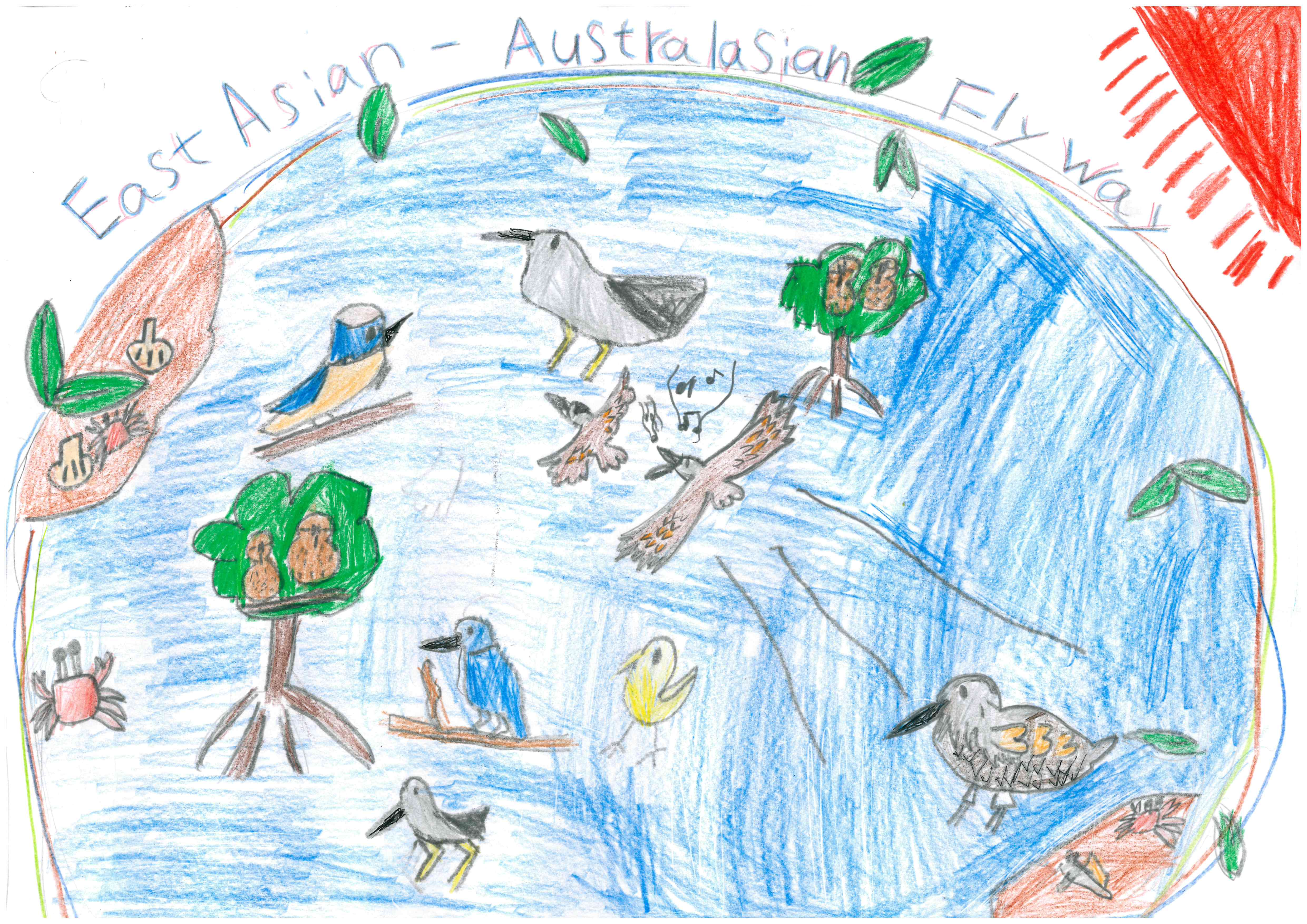 Artwork submitted by Shion Kinjo (8 years old) for the EAAFP Knots Drawing Competition