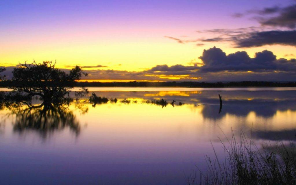 Peel-Yalgorup Wetlands (Ramsar 482) Photo: David Rennie