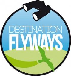 flyways2_black-green_small-238x254