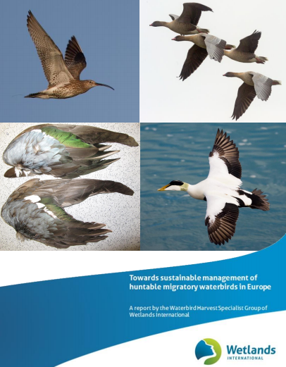 Towards sustainable management of huntanle migratory waterbirds in Europe