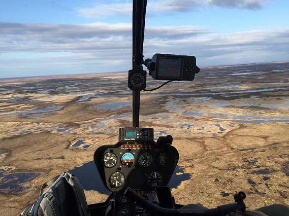View of the Yukon Delta National Wildlife Refuge from the inside of the R44 helicopter © Richard Lanctot